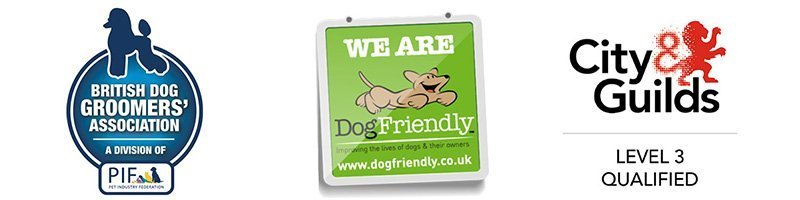 Dog Grooming Surrey Acceditations